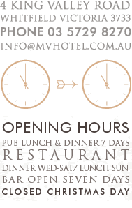 Mountain View Hotel Details